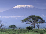Mount Kilimanjaro, Amboseli National Park, Kenya Reproduction photographique Premium par Art Wolfe