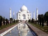 The Taj Mahal, Agra, India Fotografie-Druck von Bill Bachmann