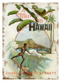 A Trip to Hawaii Impressão giclée