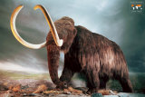 Woolly Mammoth Plakater