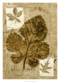 Leaf Collage IV Giclée-tryk af Kate Archie