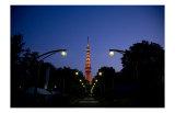 Tokyo Tower: Night Prints by Takashi Kirita