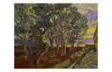 The Garden of Saint Paul's Hospital Reproduction procédé giclée par Vincent van Gogh