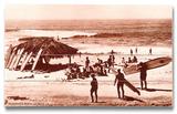 Tiki Hut Placa de madeira