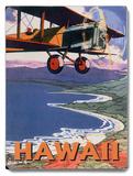 Hawaii Sight Seeing by Air Placa de madeira