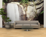 Waterfall in the Forest, Pisgah National Forest, Brevard, North Carolina, USA Wall Mural – Large