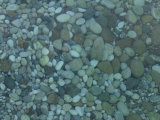 Rounded Blue Stones under Water Photographic Print