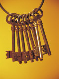 Group of Brass Keys on Keyring Photographic Print