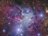 Fox Fur Nebula Fotografie-Druck von  Stocktrek Images