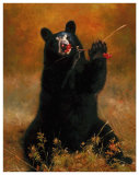 Black Bear with Berries Art by H. Kendrick