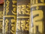 Prayer Wheels, Do-Drul Chorton, Gangtok, Sikkim, India Photographic Print by Jane Sweeney