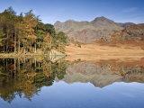 Blea Tarn, Lake District, Cumbria, UK Photographic Print by Doug Pearson