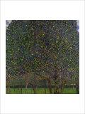 Pear Tree Giclée-tryk af Gustav Klimt