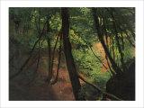 In the Middle of the Forest Reproduction procédé giclée par Gustav Klimt