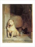 Low Life Giclée-tryk af Edwin Henry Landseer