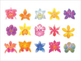 Flower Blossom with Smile Giclee Print by Miyuki Hasekura