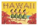 Hawaii Giclée-tryk af Kerne Erickson