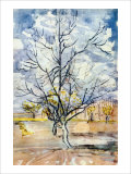 An Orchard Giclee Print by Vincent van Gogh