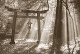 Torii Shrine Kunstdrucke