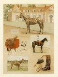 Le Haras-Du-Pin Poster par Laurence David