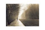 Jardin de Versailles Pôsters