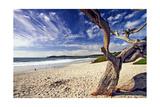Carmel Beach, California Reproduction photographique par George Oze