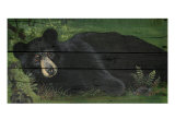 Lazy Bear Ranch Premium Giclee Print by Penny Wagner