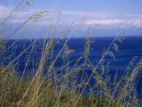 View of the Sea Through Grasses Atop a Hill Photographic Print by Marcia Kebbon