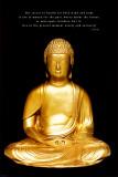 Buda Fotografia