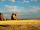 Grain Elevators Stand in a Prairie Ghost Town, Rowley, Alberta, Canada Fotoprint av Pete Ryan