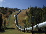 Trans-Alaska Pipeline Passing over Squirrel Creek, Chugach Range, Alaska Photographic Print by George Herben