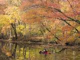 Woman Kayaking Down the Chesapeake and Ohio Canal National Park Lámina fotográfica por Brown, Skip