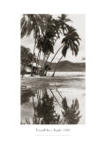Coco Palms, Acapulco, 1932 Giclée-Druck