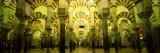 Interiors of a Cathedral, La Mezquita Cathedral, Cordoba, Cordoba Province, Spain Photographic Print