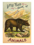 Bear on Book Cover アート