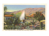 Cactus Garden, Palm Springs, California Posters