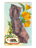 California Map with Bear and Poppies Poster
