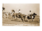 Woman Bronco Rider Prints