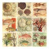 Im Meer I Kunstdrucke