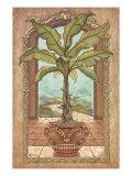 Klassischer Bananenbaum Giclée-Premiumdruck von Janet Kruskamp