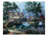 Garden Pond Premium Giclee Print by Nenad Mirkovich