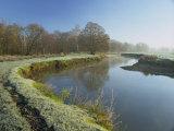 River Wey at Thundery Meadows, Surrey Wildlife Trust's Wetland Reserve, Elstead, Surrey, England Reproduction photographique par Pearl Bucknall