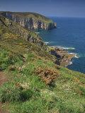 Landscape of Cliffs Along the Coastline at Cap Frehel, Cote D'Emeraude, in Brittany, France, Europe Reproduction photographique par Michael Busselle