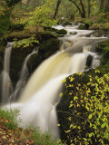 Small Waterfall on Aira River, Ullswater, Cumbria, England, United Kingdom, Europe Reproduction photographique par Pearl Bucknall