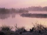 Moor Green Lakes Nature Reserve, Finchamstead, Berkshire, England, UK Reproduction photographique par Pearl Bucknall