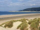 Sand Dunes and Borth Beach, Ynyslas, Borth, Dyfed, Wales, United Kingdom, Europe Reproduction photographique par Pearl Bucknall