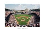 Estadio de los Yankees en Bronx, Nueva York Láminas por Ira Rosen