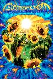 Terrapin Sunflower Plakat