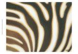 Stripes I Posters by Norman Wyatt Jr.