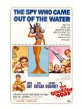 The Glass Bottom Boat, with Edward Andrews, Doris Day, Arthur Godfrey, and Rod Taylor, 1966 Photo